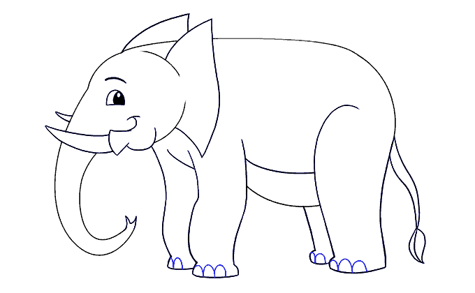 Cách vẽ voi: Bước 16