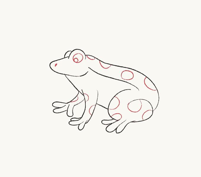 Cách vẽ ếch: Bước 6