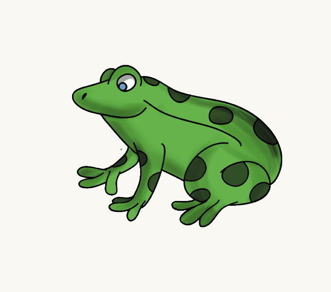 Cách vẽ ếch: Bước 7